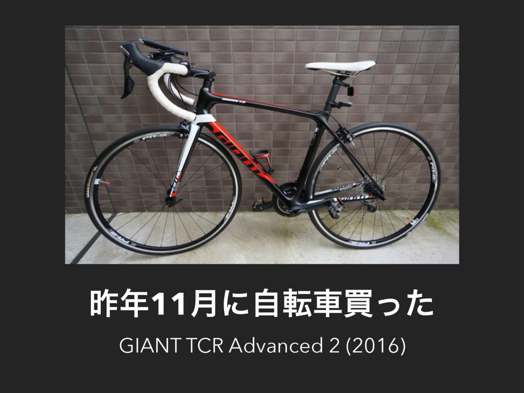 ࡢ11݄ʹࣗసंങͬͨ GIANT TCR Advanced 2 (2016)