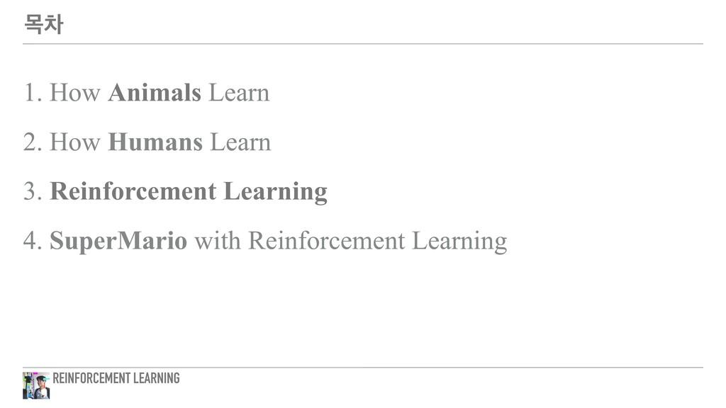 ݾର 1. How Animals Learn 2. How Humans Learn 3. ...