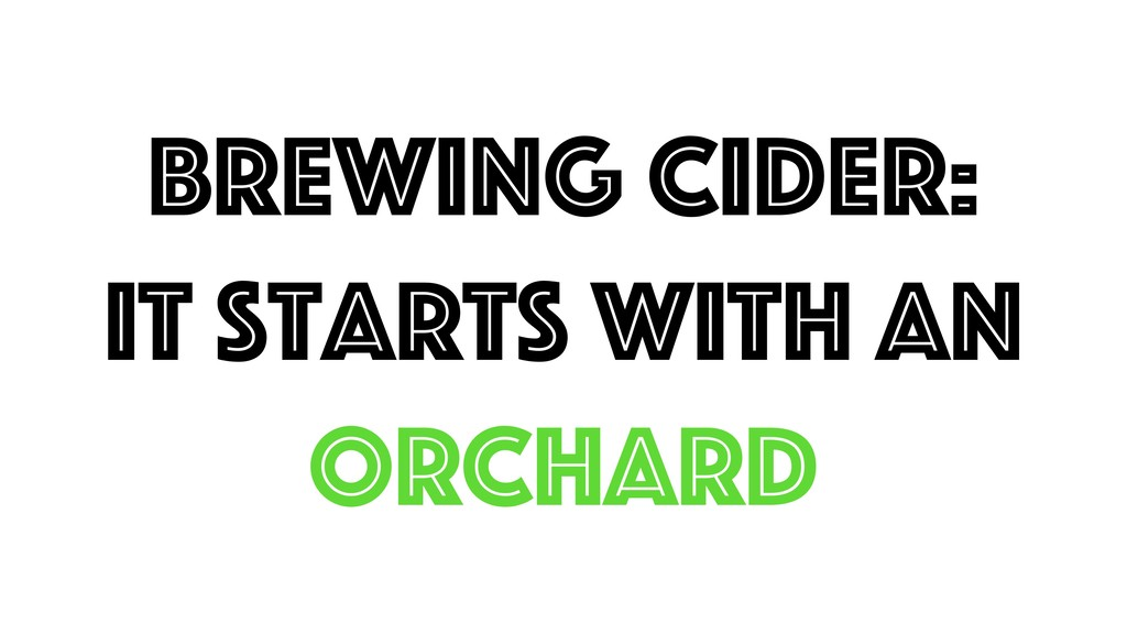Brewing cider: It starts with an ORCHARD