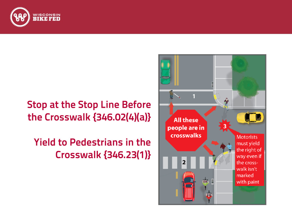 Stop at the Stop Line Before the Crosswalk {346...