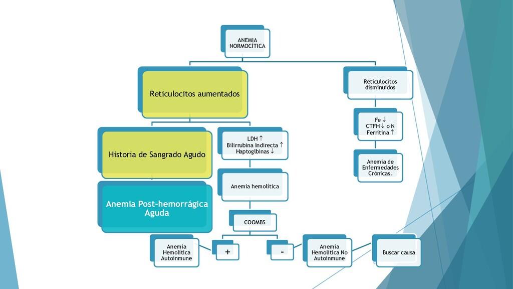 44 ANEMIA NORMOCÍTICA Reticulocitos aumentados ...