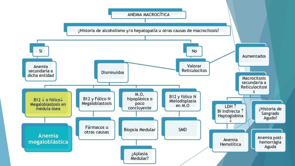 53 ANEMIA MACROCÍTICA ¿Historia de alcoholismo ...