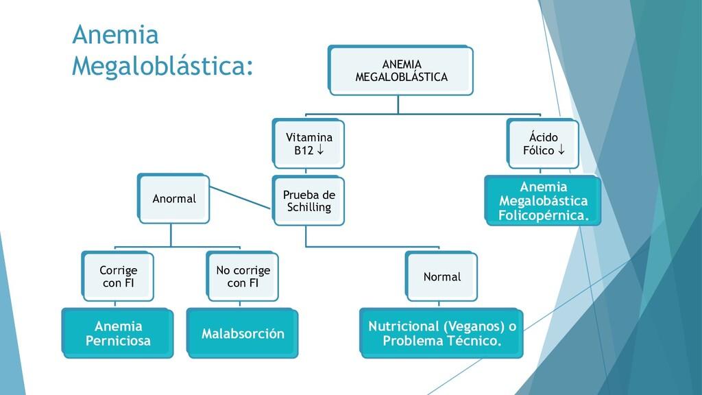 ANEMIA MEGALOBLÁSTICA Vitamina B12  Prueba de ...