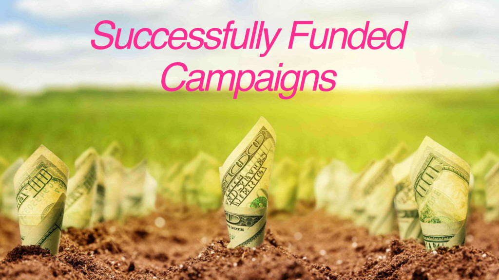 Successfully Funded Campaigns