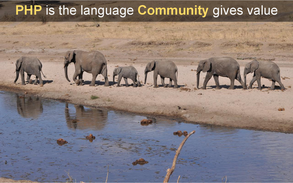 PHP is the language Community gives value