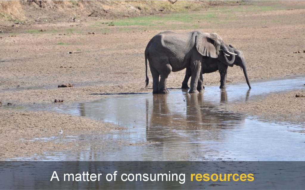 A matter of consuming resources
