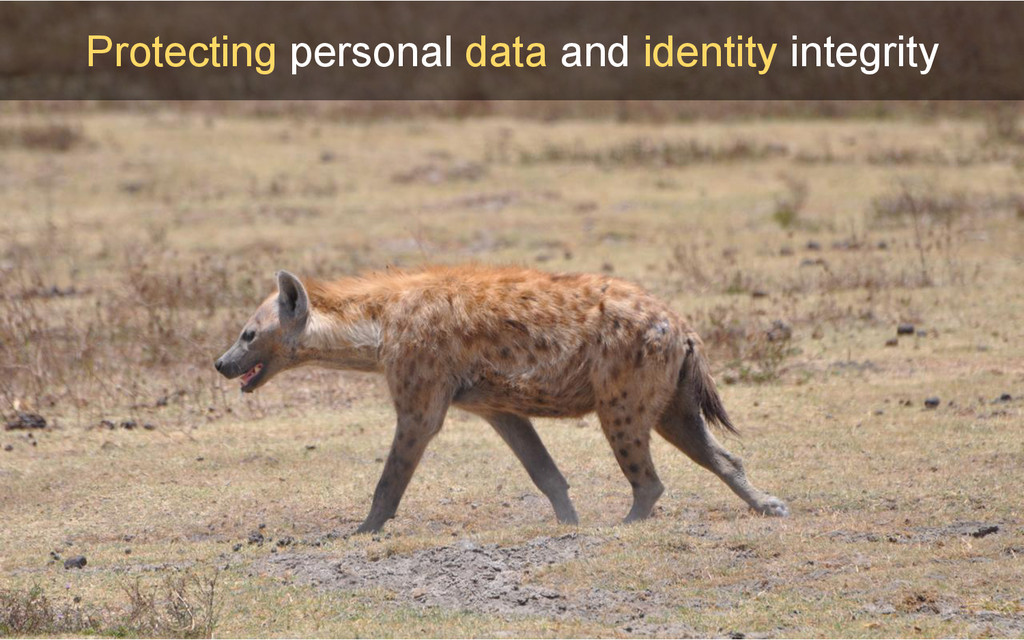Protecting personal data and identity integrity...