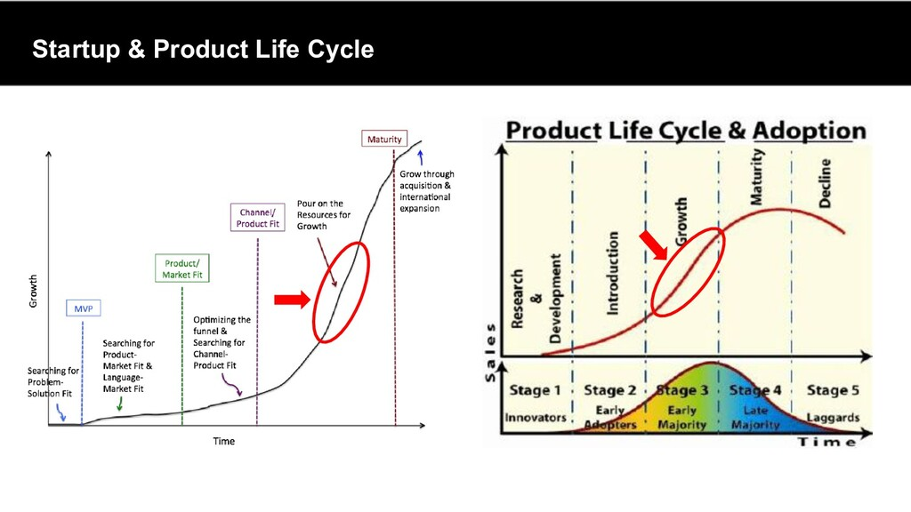 Startup & Product Life Cycle