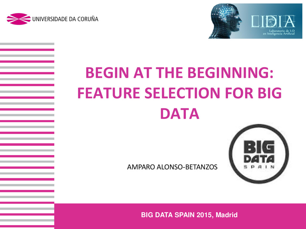 BEGIN AT THE BEGINNING: FEATURE SELECTION FOR B...