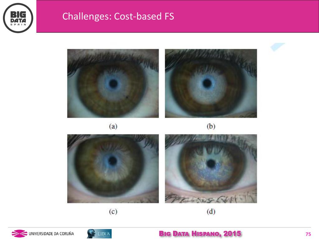 BIG DATA HISPANO, 2015 75 Challenges: Cost-base...