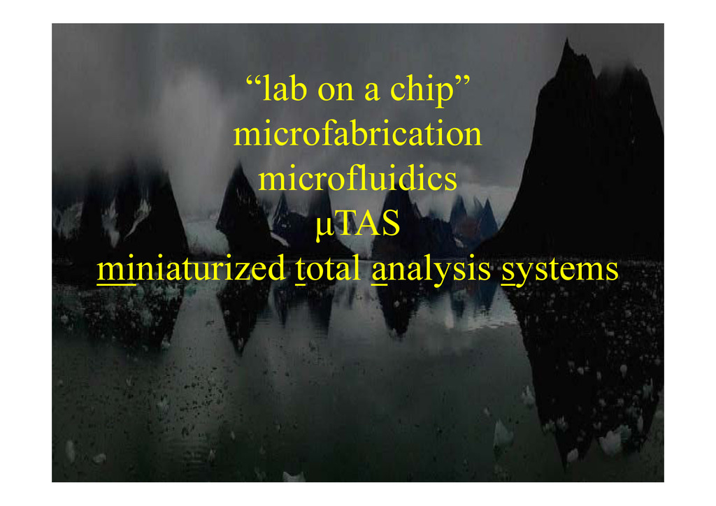 """l b hi "" ""lab on a chip"" microfabrication micr..."