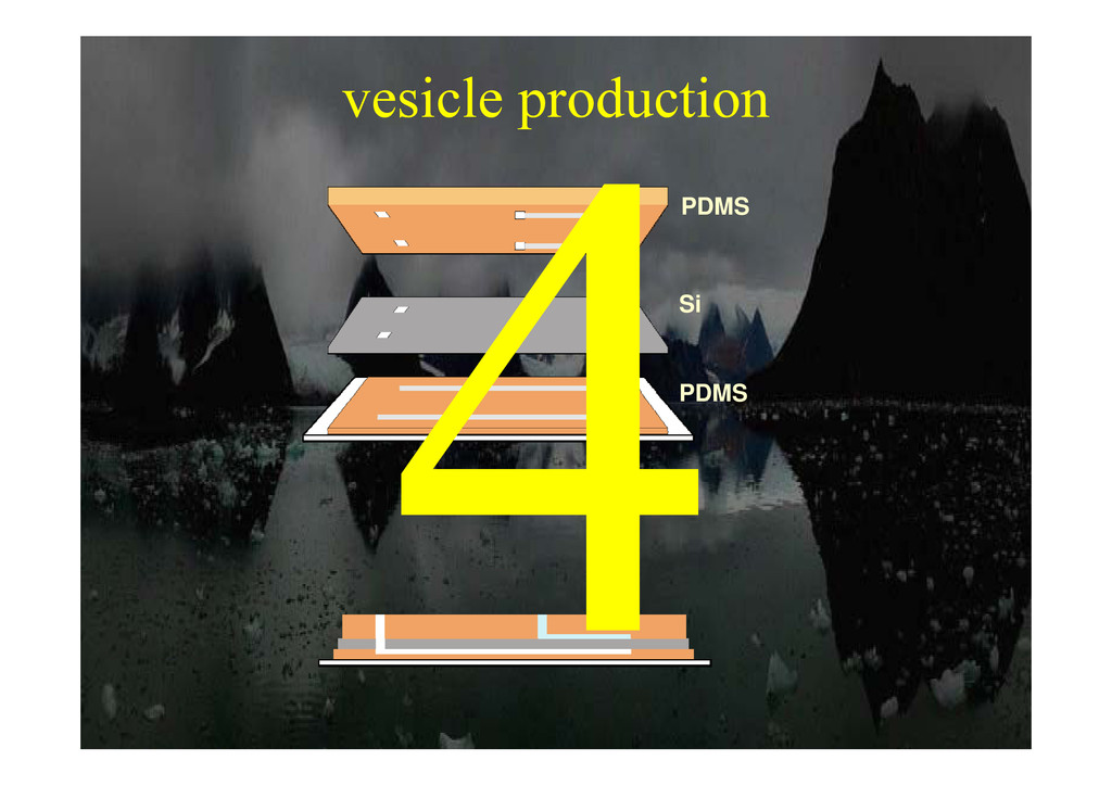 vesicle production PDMS p PDMS Si PDMS Si PDMS