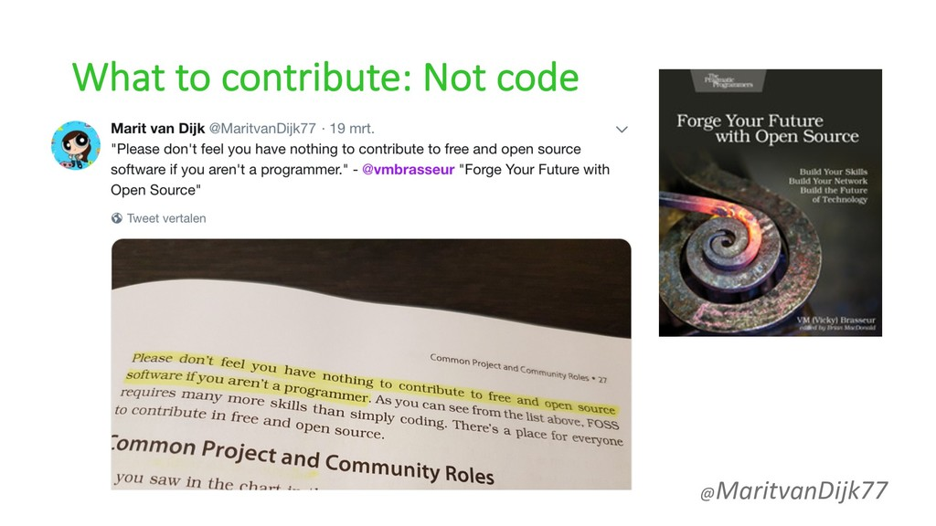 What to contribute: Not code @MaritvanDijk77