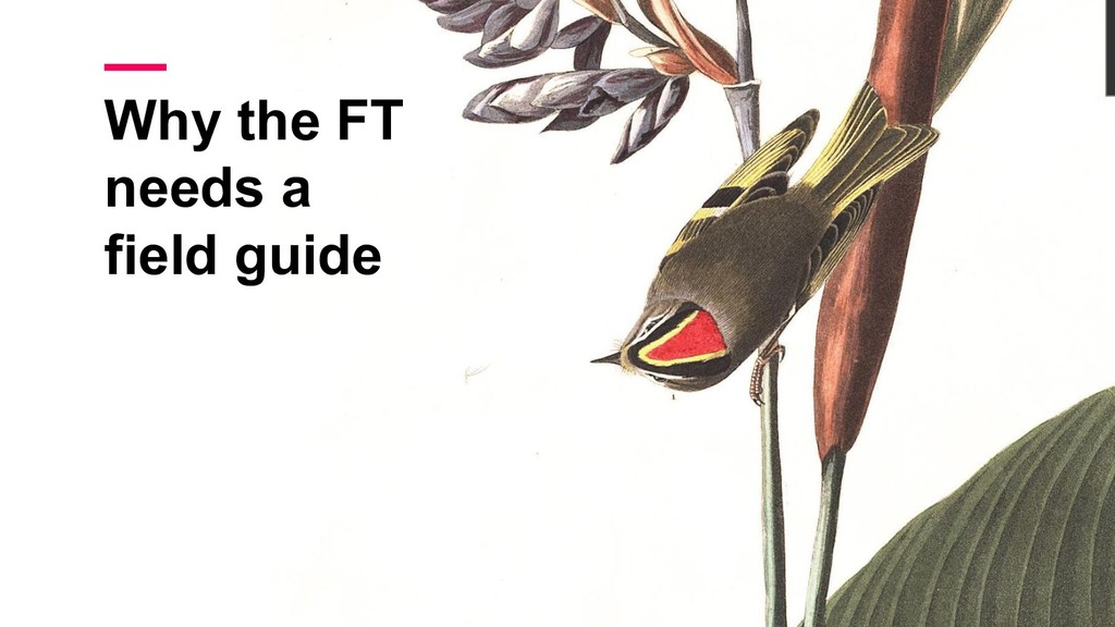 Why the FT needs a field guide