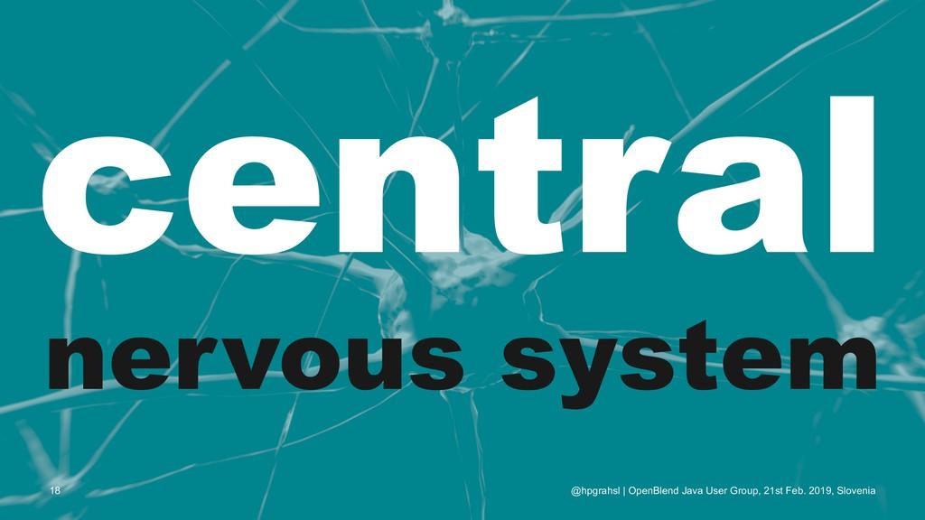 central nervous system @hpgrahsl | OpenBlend Ja...