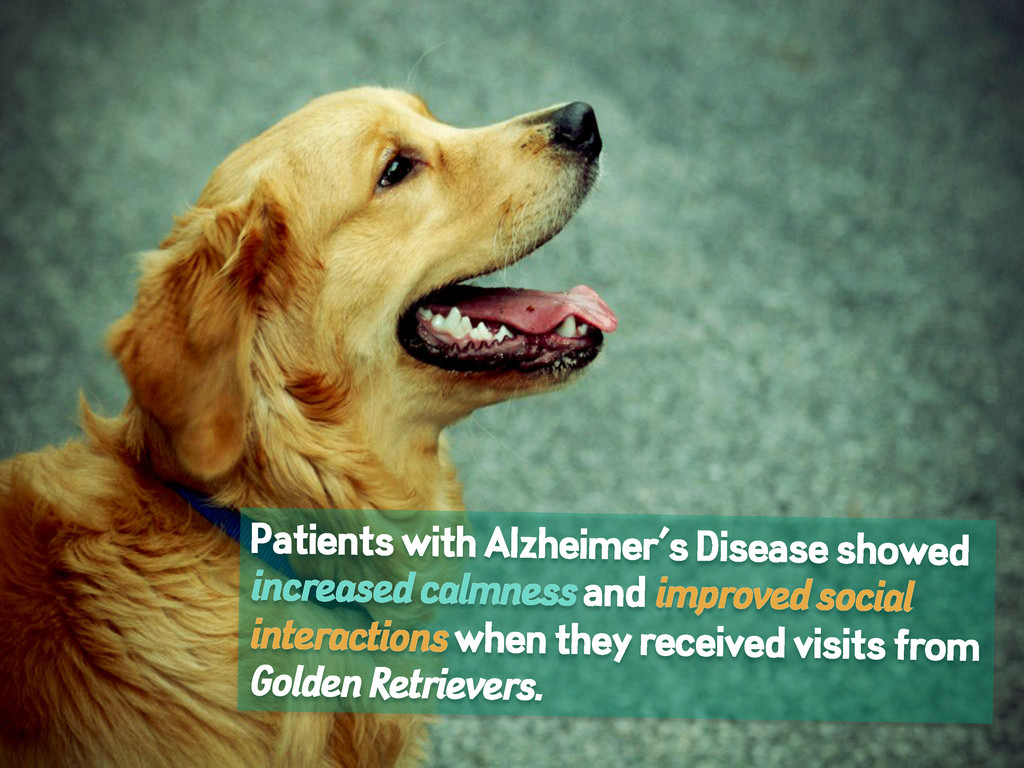 Patients with Alzheimer's Disease showed increa...