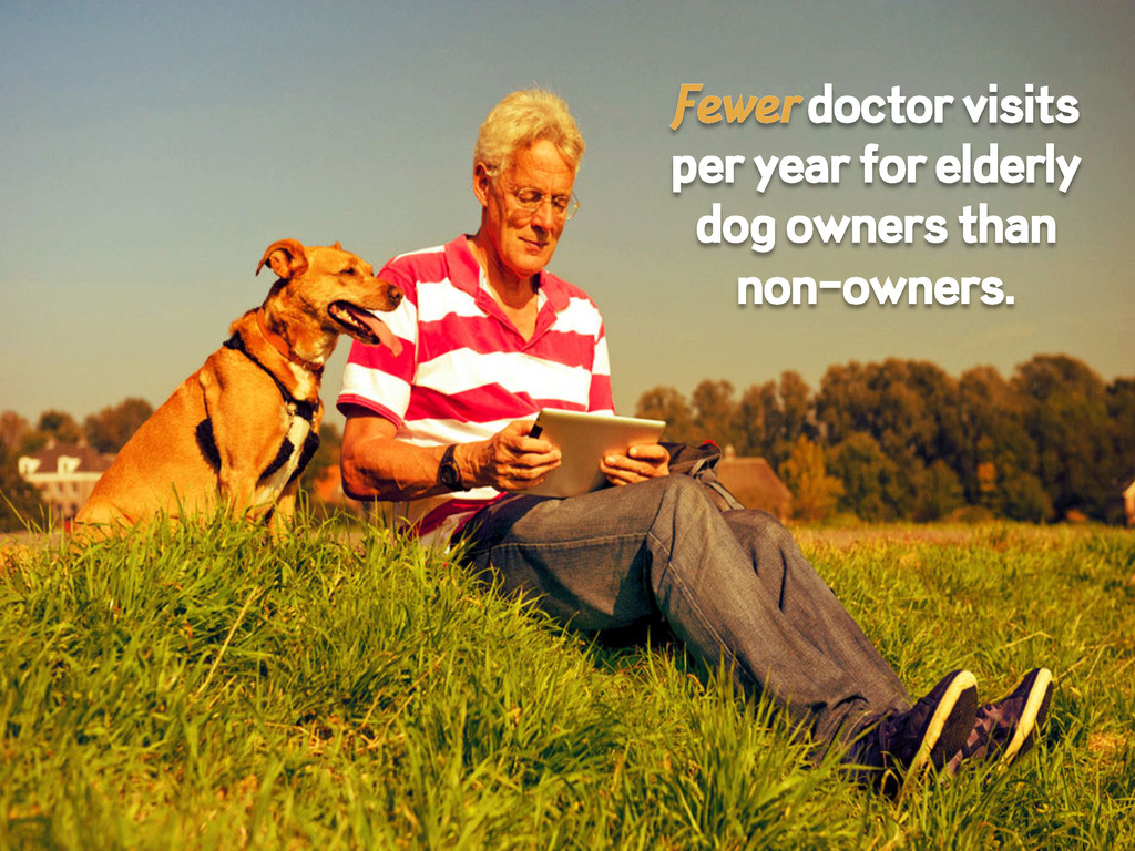 Fewer doctor visits per year for elderly dog ow...