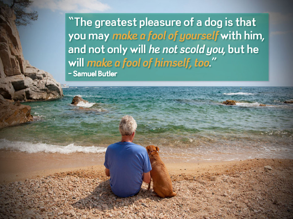 """""""The greatest pleasure of a dog is that you may..."""