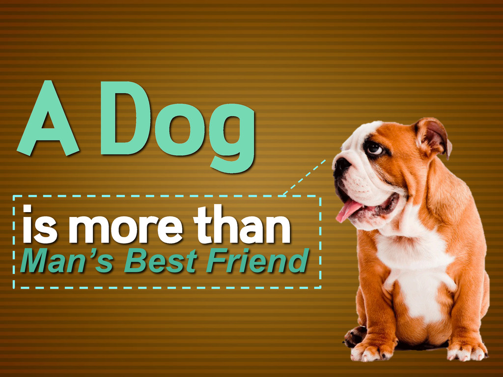 A Dog is more than Man's Best Friend