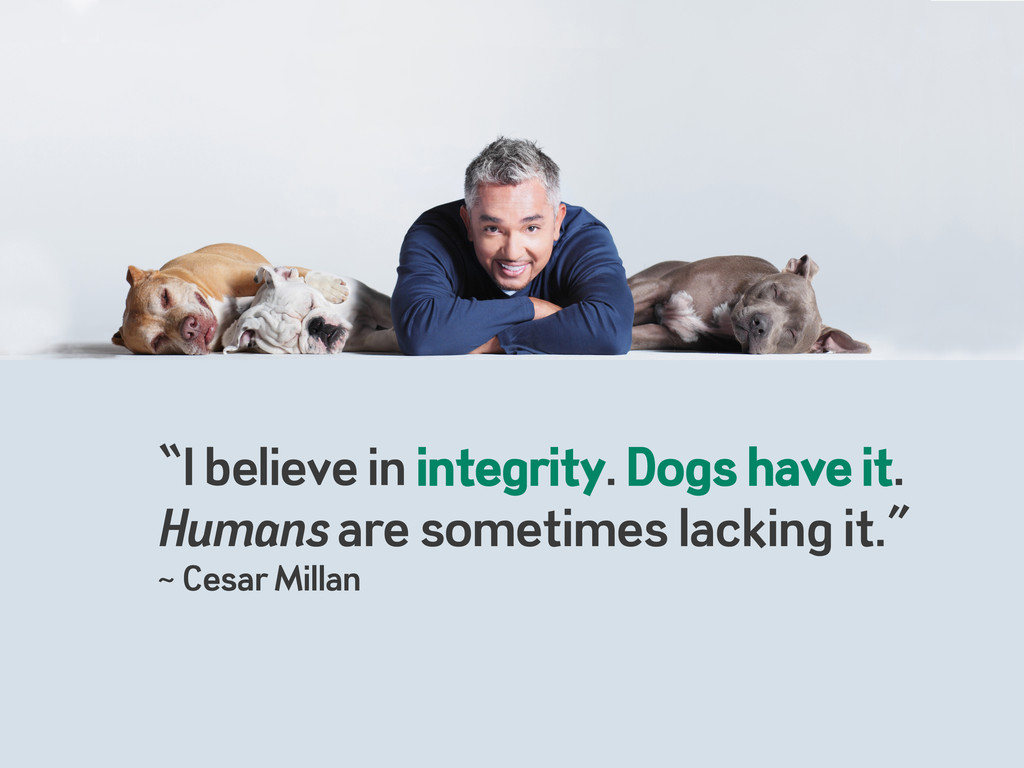 """""""I believe in integrity. Dogs have it. Humans a..."""