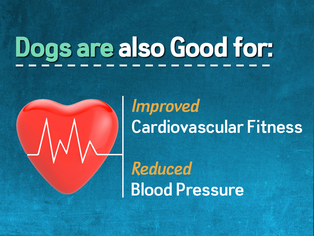 Dogs are also Good for: Improved Cardiovascular...