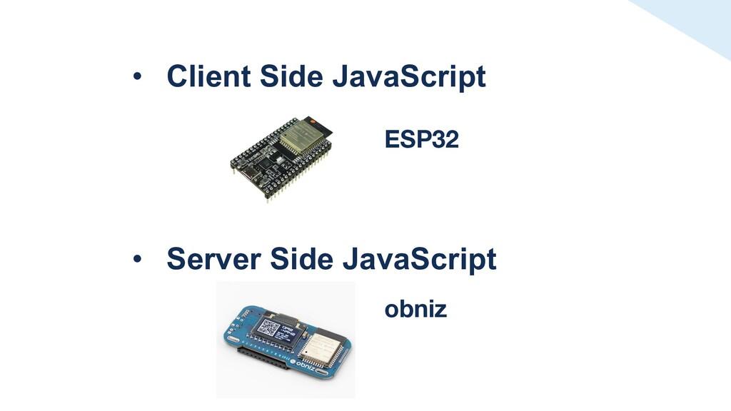 • Client Side JavaScript • Server Side JavaScri...