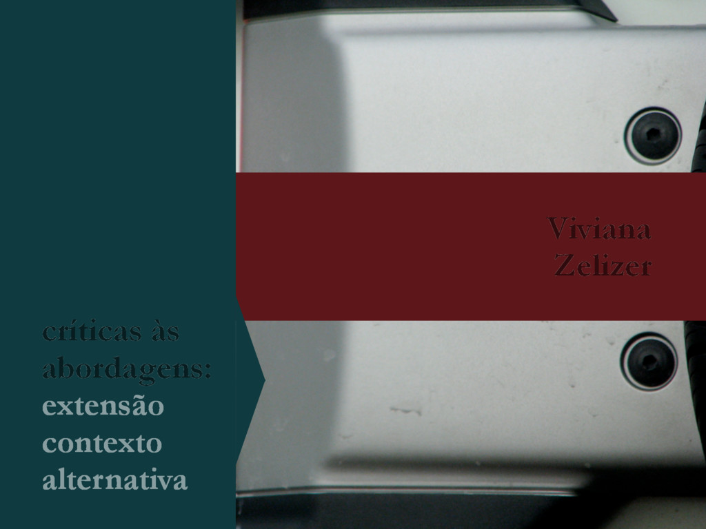Viviana Zelizer críticas às abordagens: extensã...