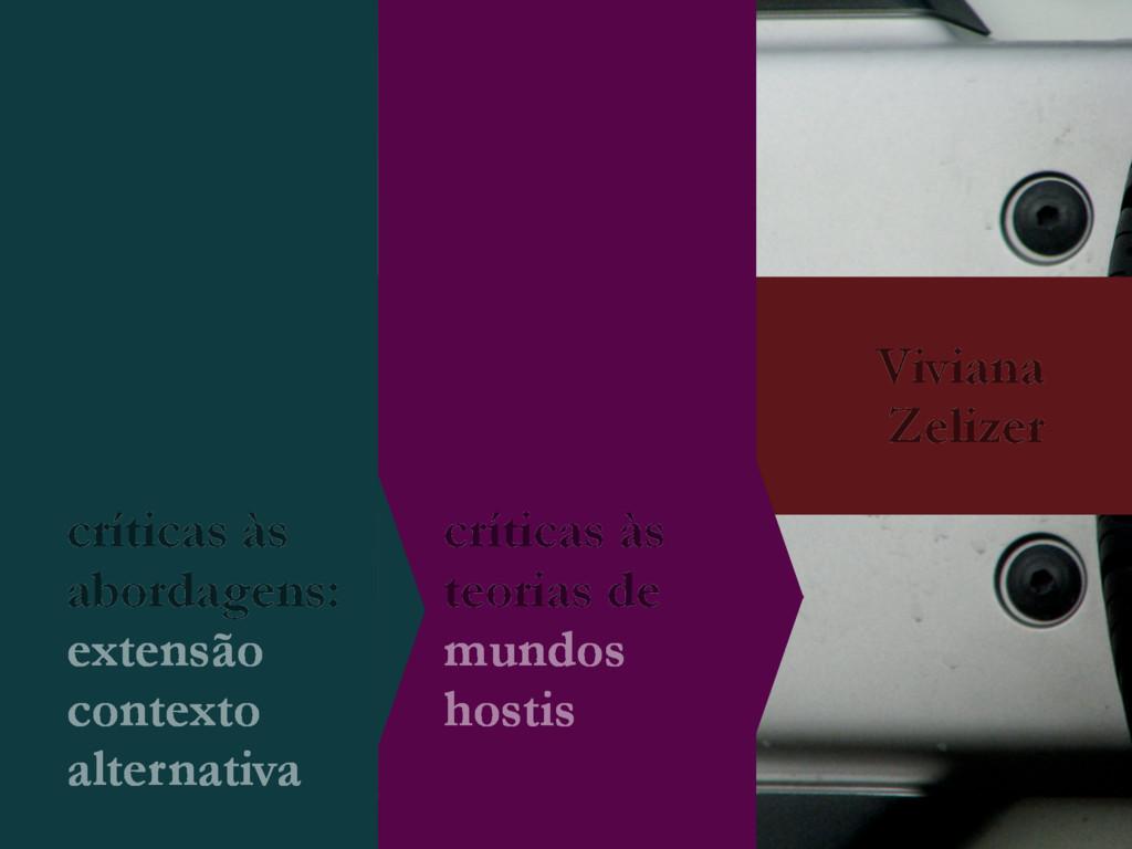 Viviana Zelizer críticas às teorias de mundos h...