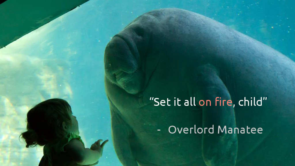 """""""Set it all on fire, child"""" - Overlord Manatee"""