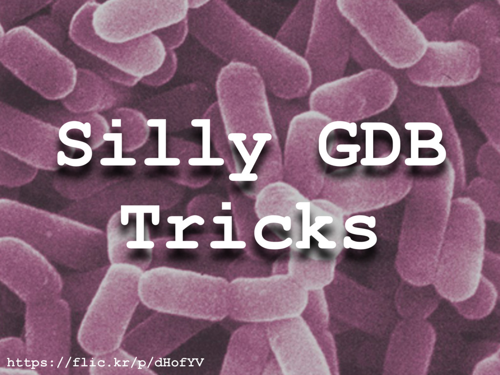 Silly GDB Tricks https://flic.kr/p/dHofYV