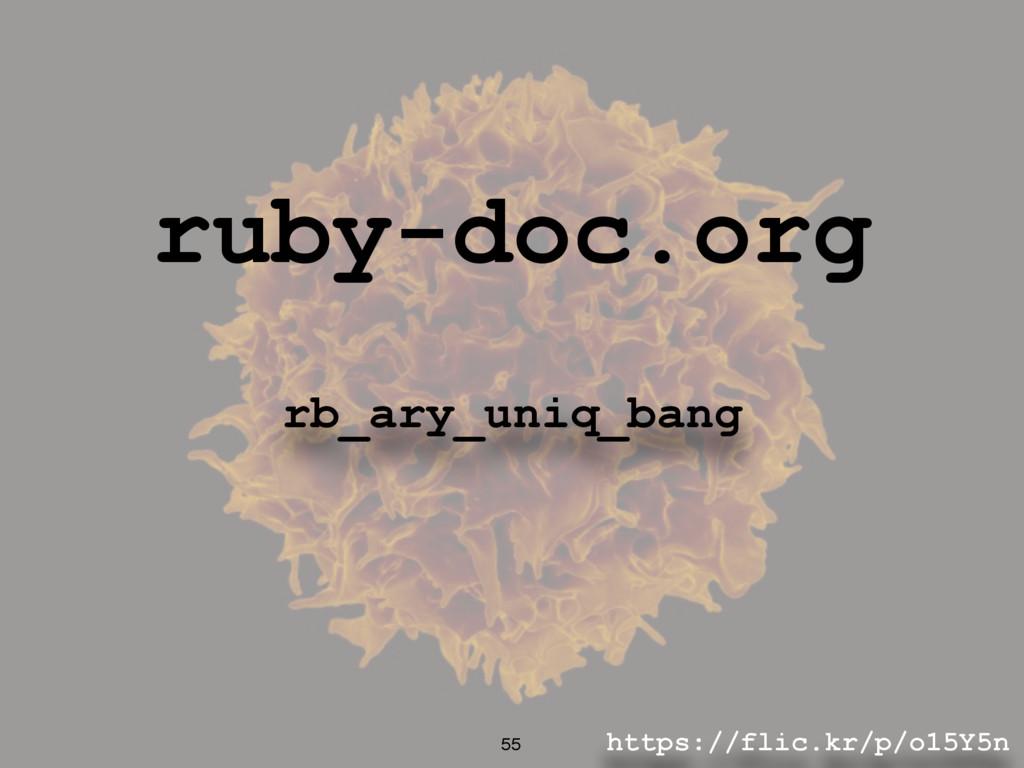 https://flic.kr/p/o15Y5n 55 ruby-doc.org rb_ary...