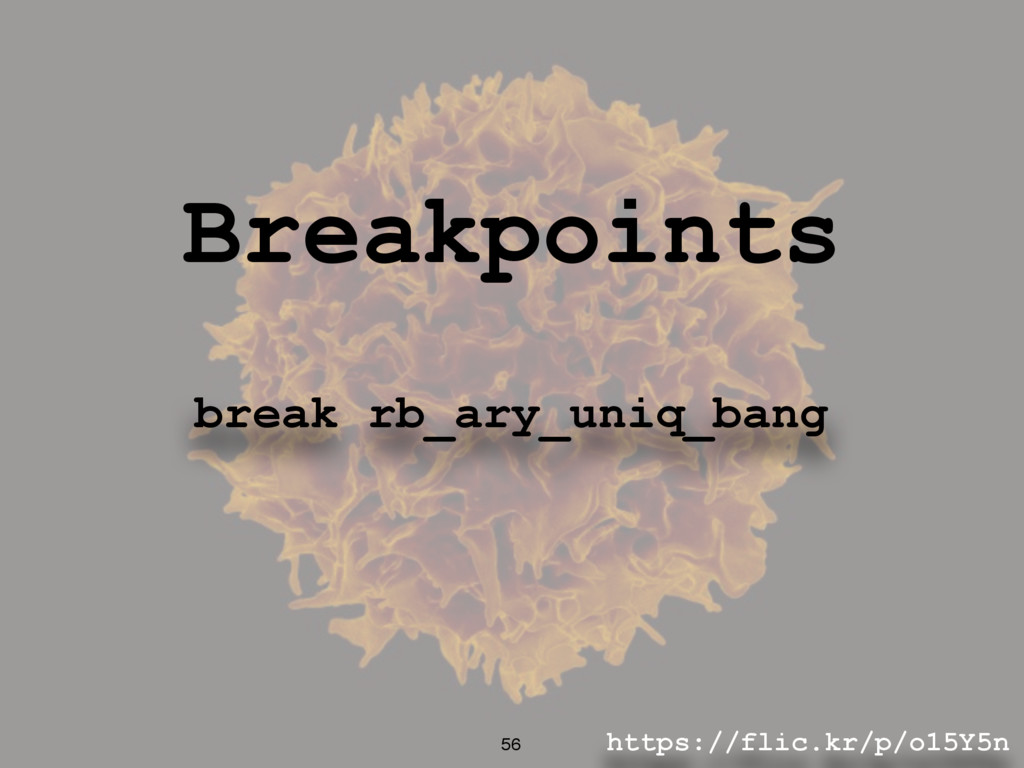 https://flic.kr/p/o15Y5n 56 Breakpoints break r...