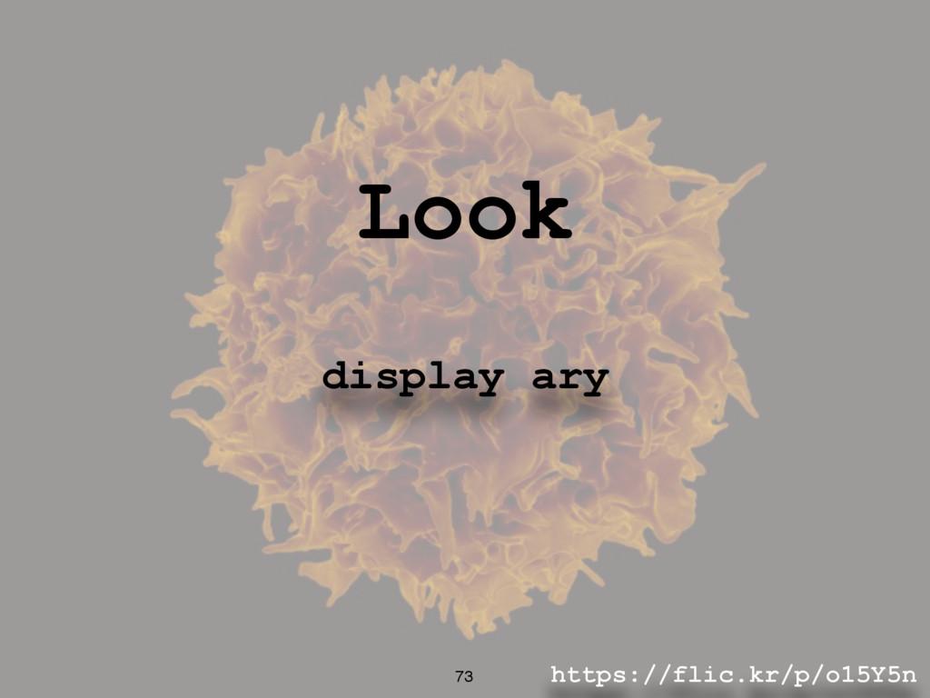 https://flic.kr/p/o15Y5n 73 Look display ary