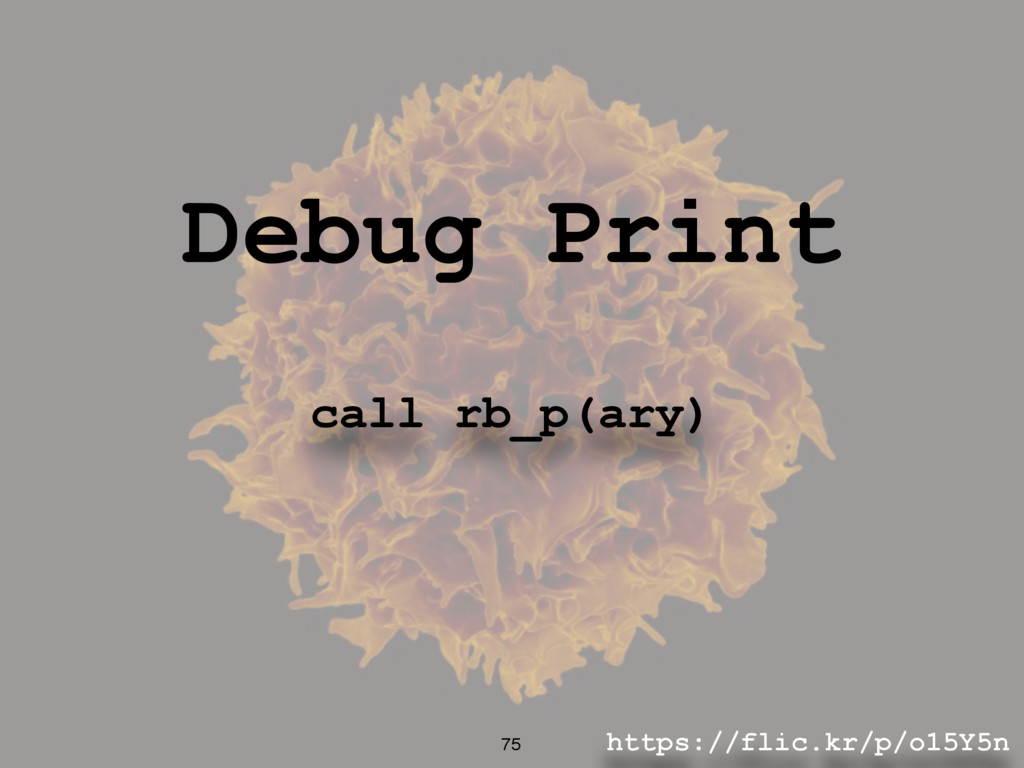 https://flic.kr/p/o15Y5n 75 Debug Print call rb...