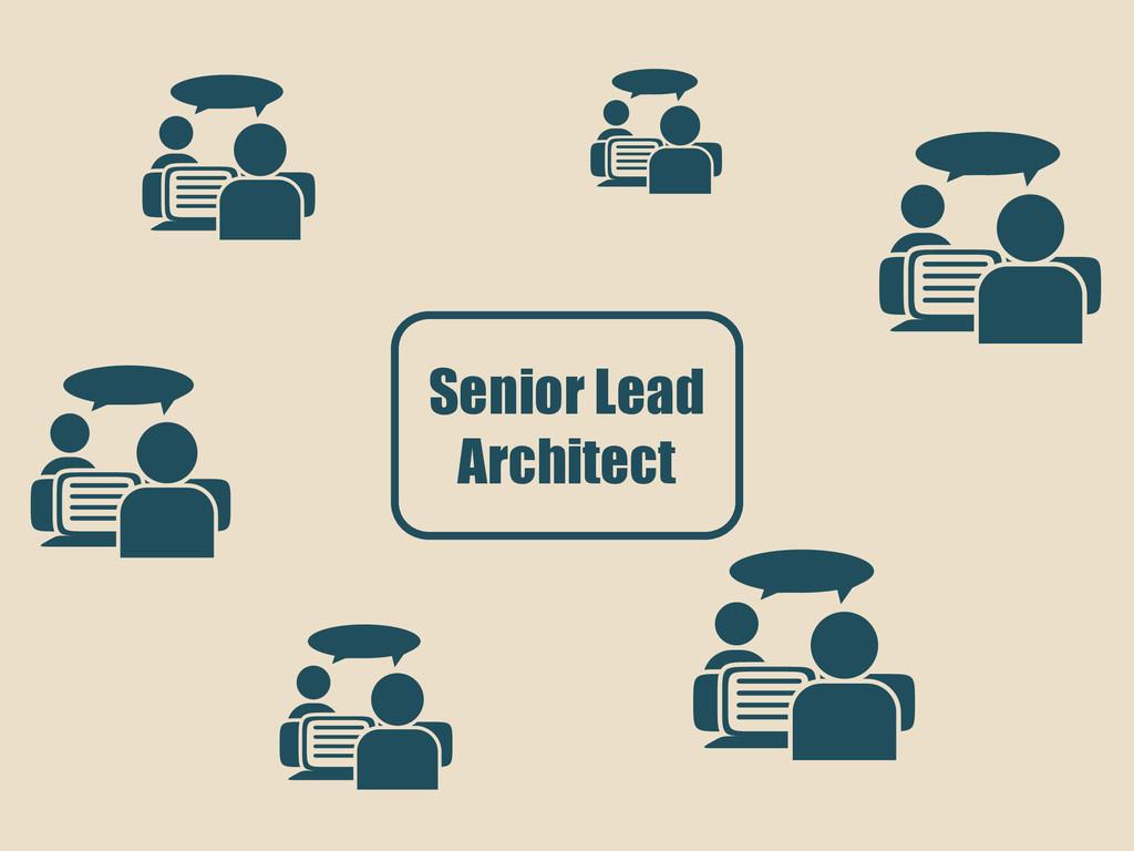 Senior Lead Architect