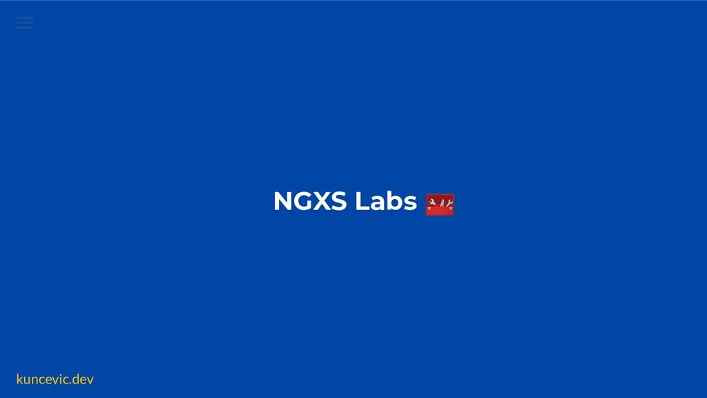kuncevic.dev NGXS Labs  ✅ Data ✅ Emitter ✅ Imme...