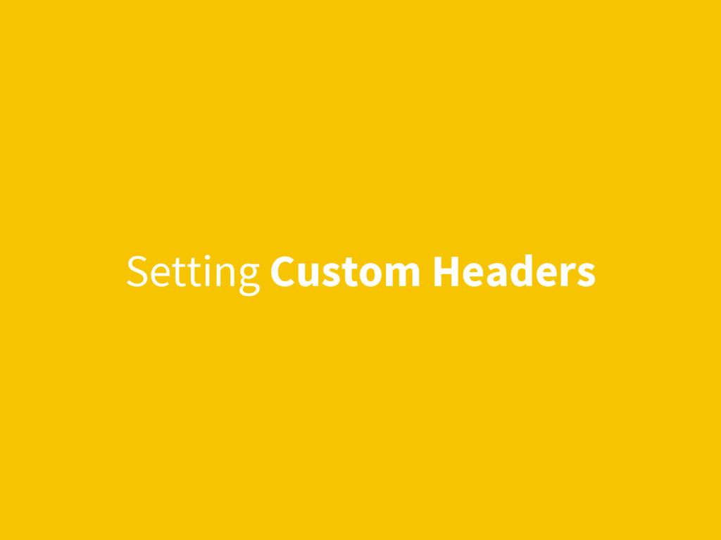 Setting Custom Headers