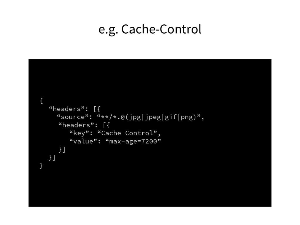 """e.g. Cache-Control { """"headers"""": [{ """"source"""": """"*..."""
