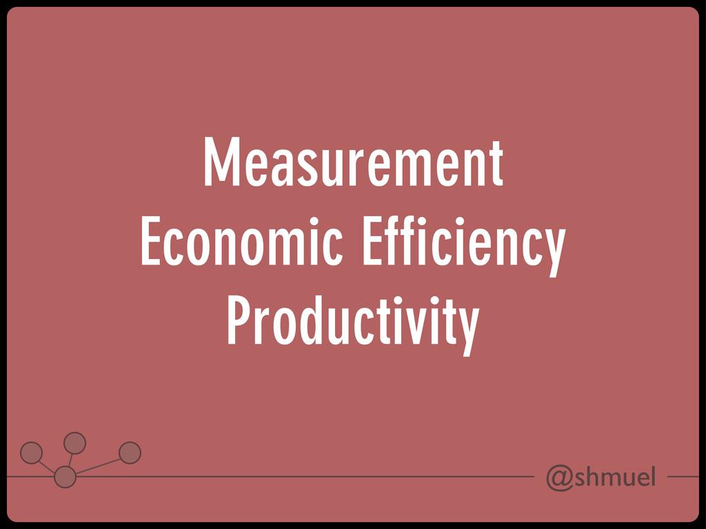 @shmuel Measurement Economic Efficiency Producti...