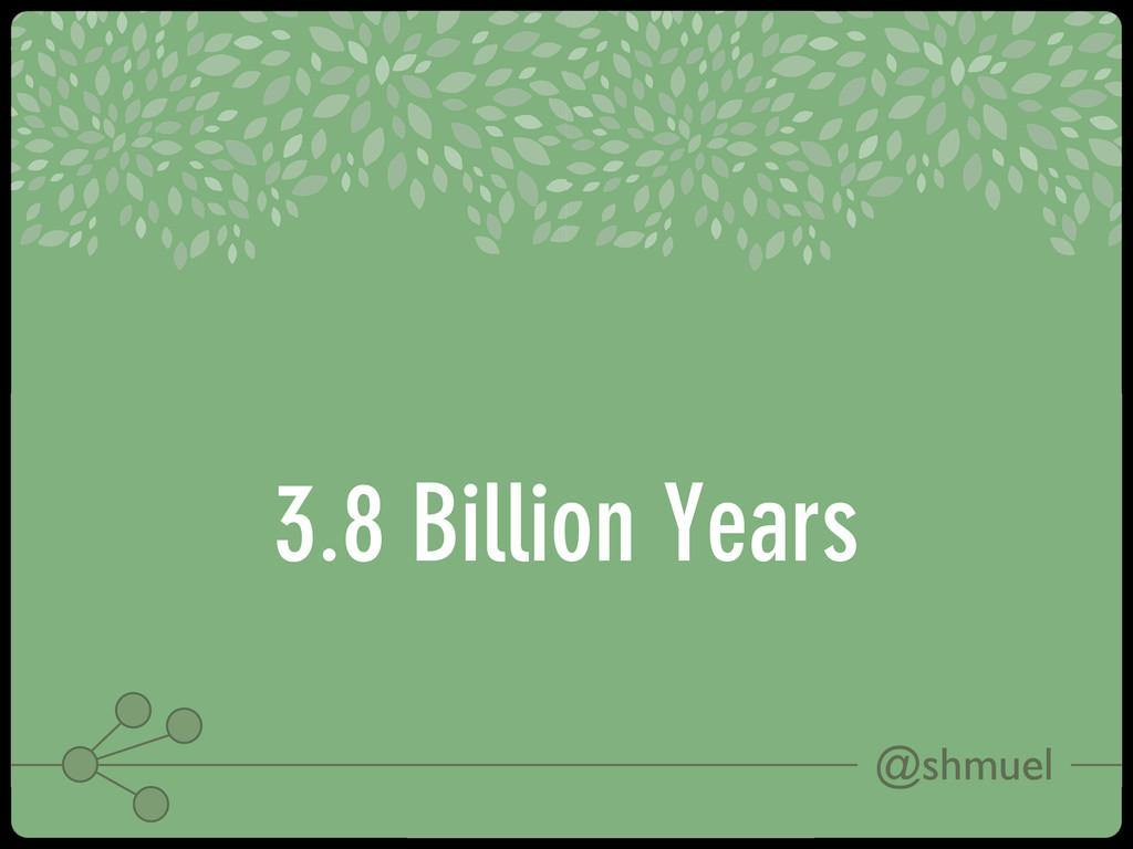 @shmuel 3.8 Billion Years