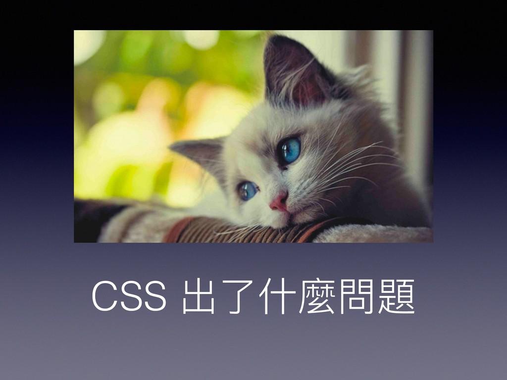 CSS 出了了什什麼問題