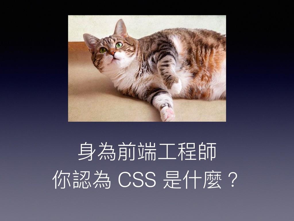 ⾝身為前端⼯工程師 你認為 CSS 是什什麼?