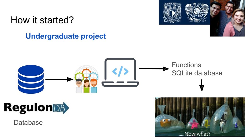 How it started? Undergraduate project Database ...