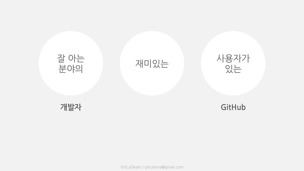 개발자 사용자가 있는 재미있는 잘 아는 분야의 GitCatTeam / gitcatlo...