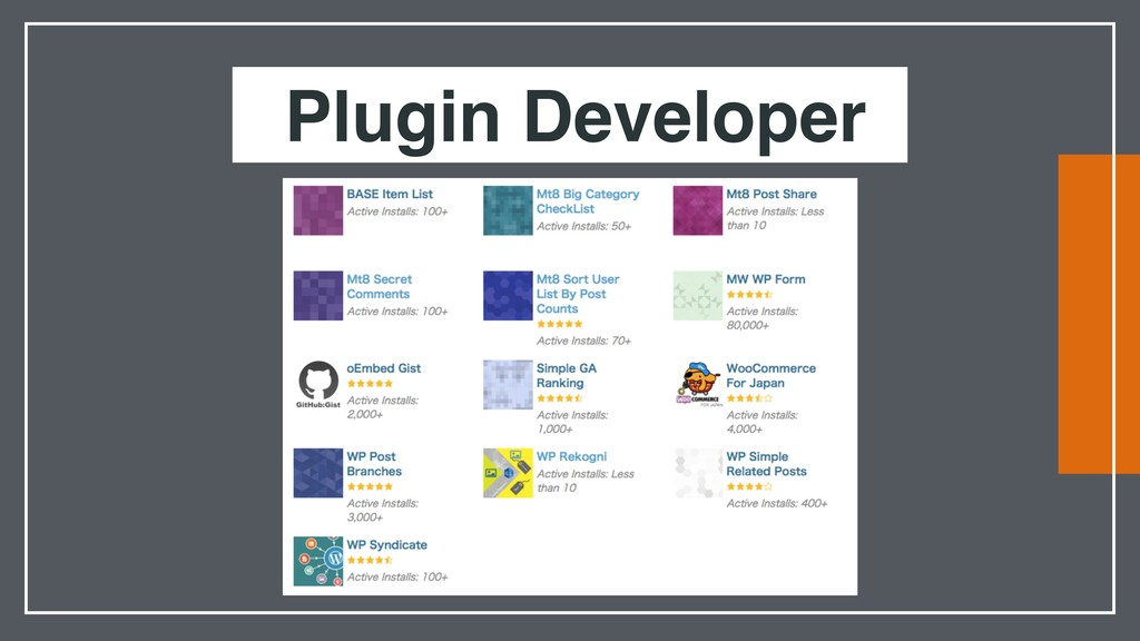 Plugin Developer