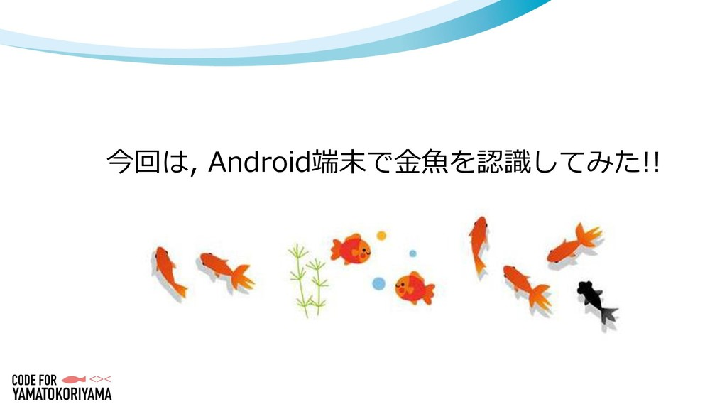 今回は, Android端末で金魚を認識してみた!!