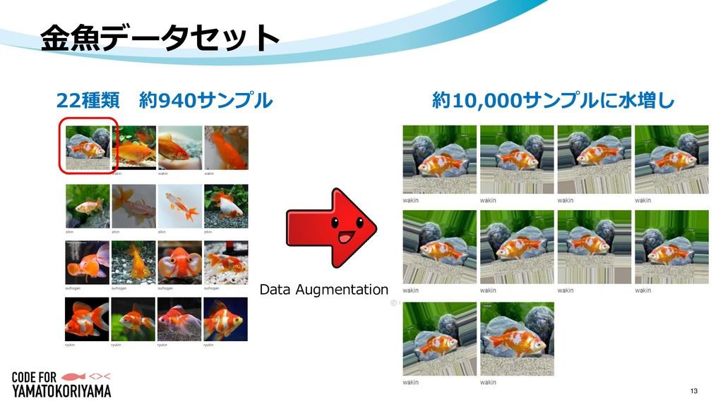 金魚データセット 13 22種類 約940サンプル Data Augmentation 約10...