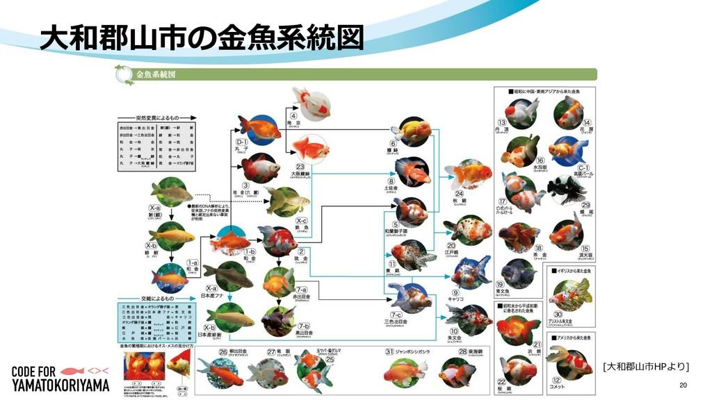 20 大和郡山市の金魚系統図 [大和郡山市HPより]