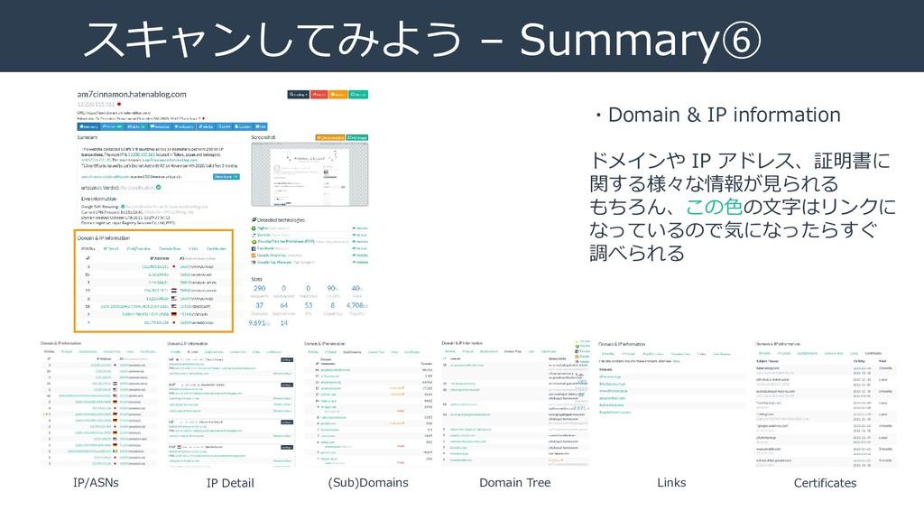 スキャンしてみよう – Summary⑥ ・Domain & IP information ド...