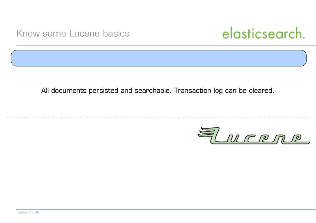 codecentric AG Know some Lucene basics All docu...